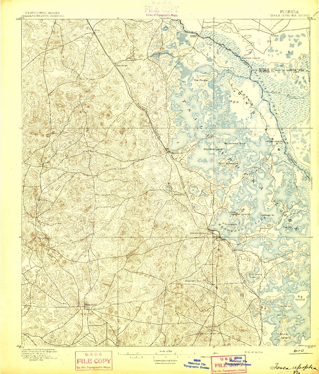 USGS 1:62500-SCALE QUADRANGLE FOR TSALA APOPKA, FL 1895