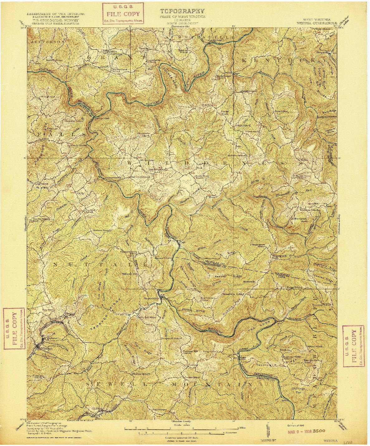 USGS 1:62500-SCALE QUADRANGLE FOR WINONA, WV 1916
