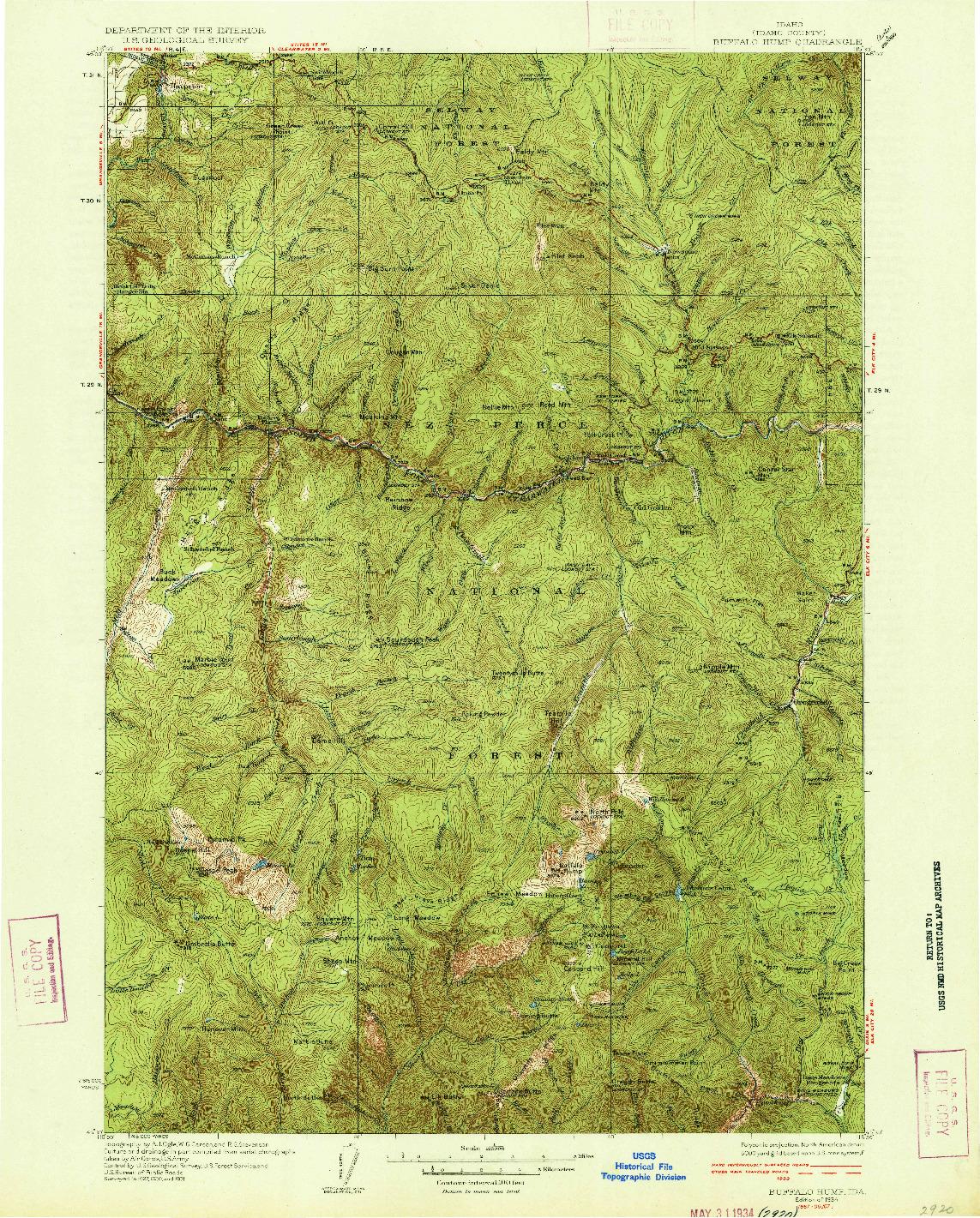 USGS 1:125000-SCALE QUADRANGLE FOR BUFFALO HUMP, ID 1934