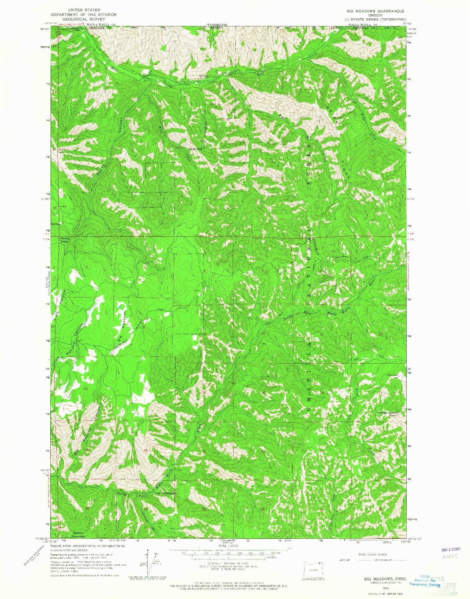 USGS 1:24000-SCALE QUADRANGLE FOR BIG MEADOWS, OR 1963