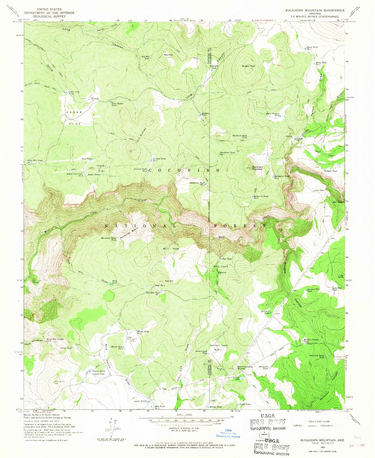 USGS 1:24000-SCALE QUADRANGLE FOR BUCKHORN MOUNTAIN, AZ 1965