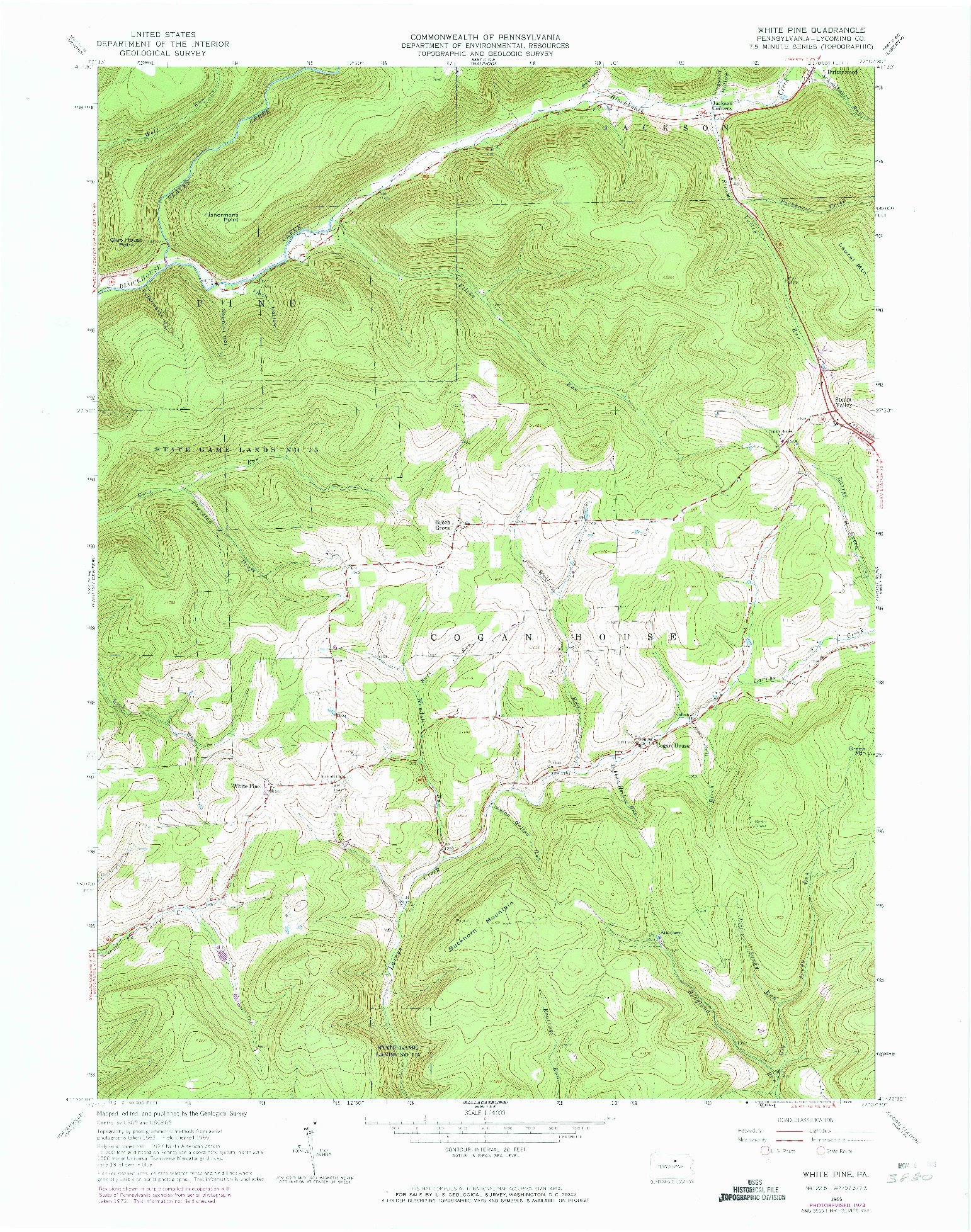 USGS 1:24000-SCALE QUADRANGLE FOR WHITE PINE, PA 1965
