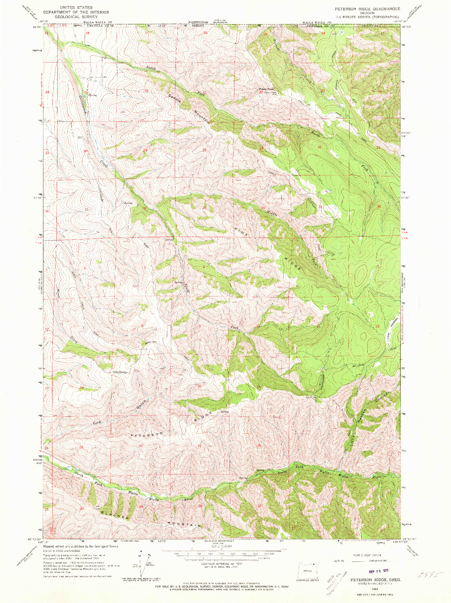 USGS 1:24000-SCALE QUADRANGLE FOR PETERSON RIDGE, OR 1963