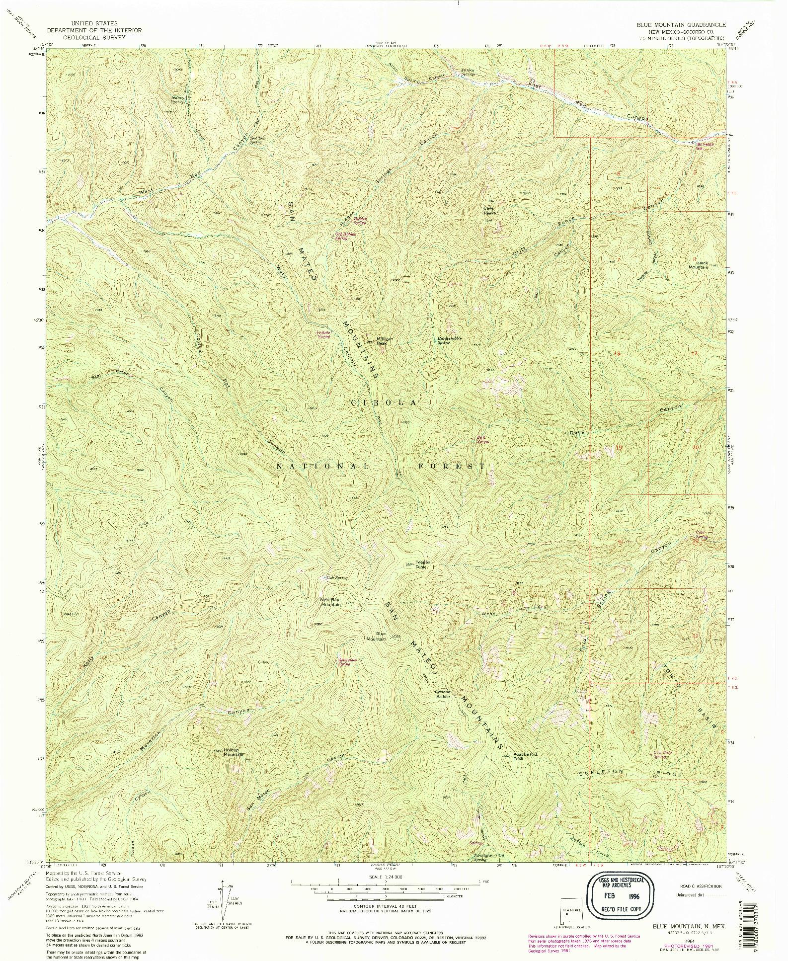 USGS 1:24000-SCALE QUADRANGLE FOR BLUE MOUNTAIN, NM 1964