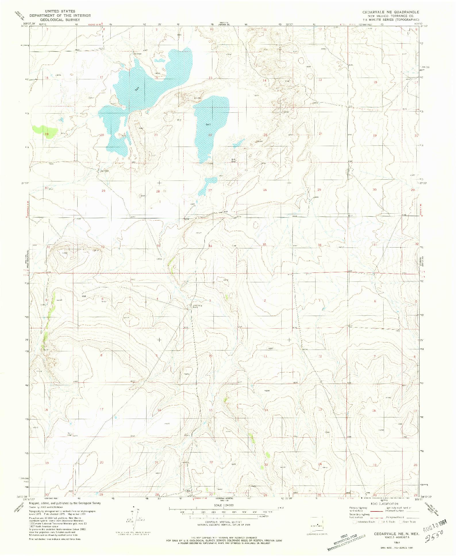 USGS 1:24000-SCALE QUADRANGLE FOR CEDARVALE NE, NM 1981
