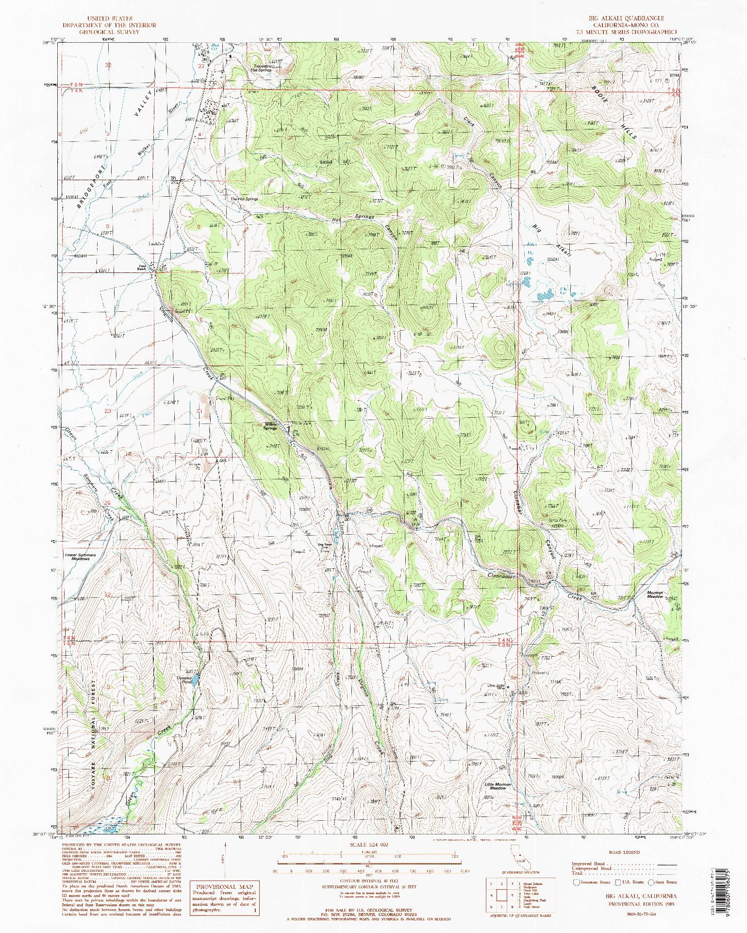 USGS 1:24000-SCALE QUADRANGLE FOR BIG ALKALI, CA 1989