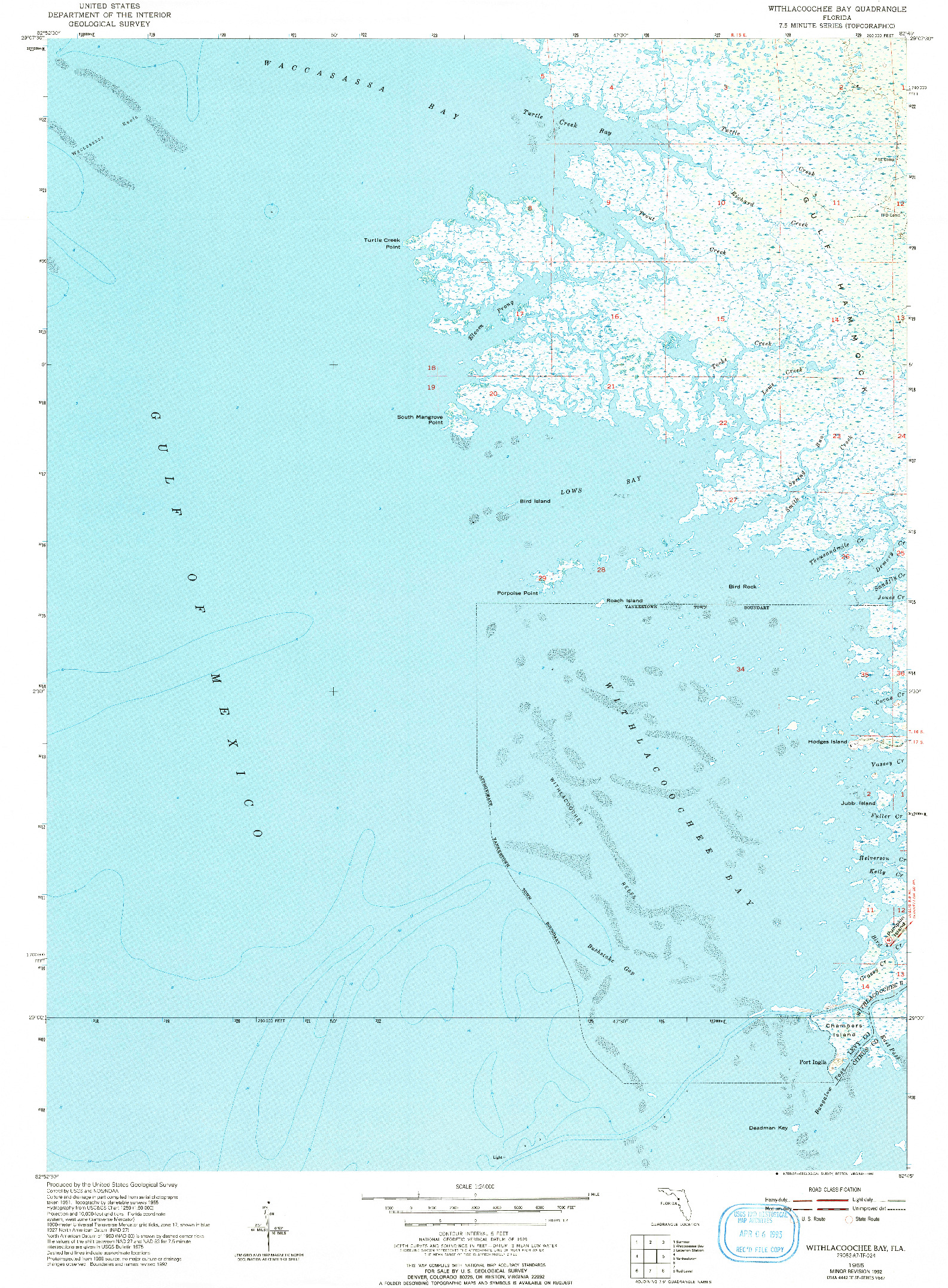 USGS 1:24000-SCALE QUADRANGLE FOR WITHLACOOCHEE BAY, FL 1955